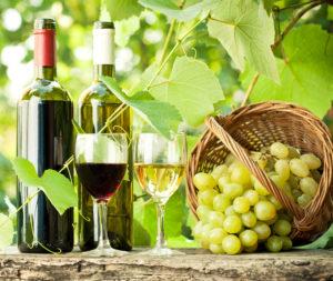 Long Island Wine Tasting Tours